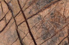 Rain Forest Brown (polished)