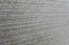 hauteville-gold-papirus-design
