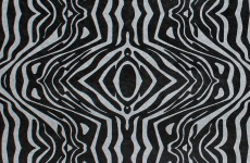 impala-black-zebra-design